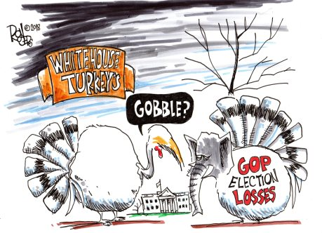 White House Turkeys